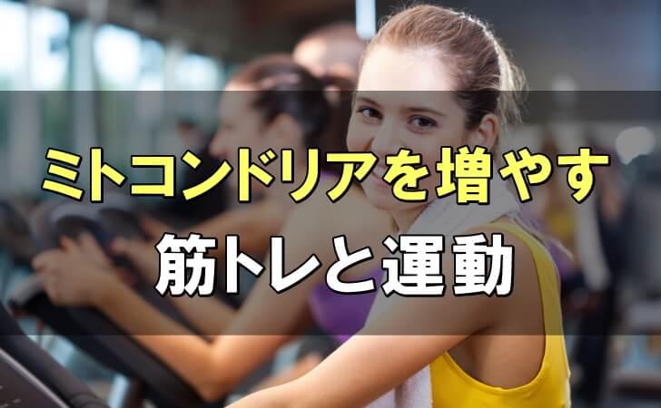 ミトコンドリアを増やす3つの筋トレと運動&コツや注意点