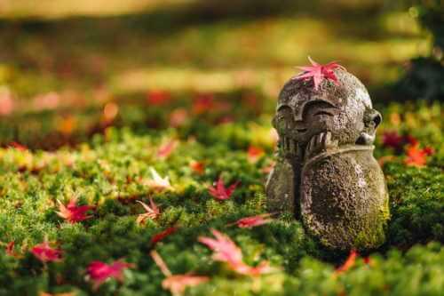 21日参りの基本は産土神社(氏神神社)へお参りします