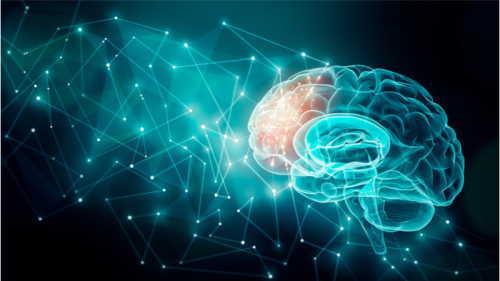 脳のホメオスタシス(現状維持機能)が邪魔をする!